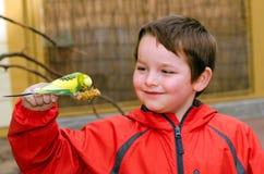 Длиннохвостый попугай счастливого мальчика держа и подавая Стоковое Изображение