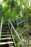 Длинные деревянные внешние шаги Стоковые Изображения
