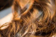 Длинные коричневые волосы как предпосылка Стоковые Изображения RF