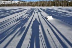 Длинные тени и фотограф дерева на снежном озере Стоковое Изображение RF