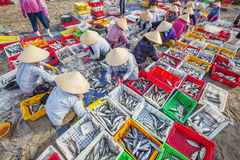 Длинный рыбный базар Hai Стоковое фото RF