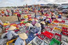Длинный рыбный базар Hai Стоковая Фотография RF