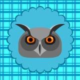 Длинн-eared сыч Стоковая Фотография