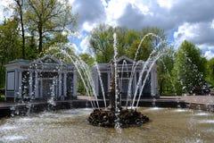 ` Ева ` фонтана в саде Peterhof Стоковые Фото