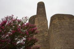 девичая башня Стоковое Фото
