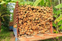 Евкалипт древесины тележки Стоковые Изображения