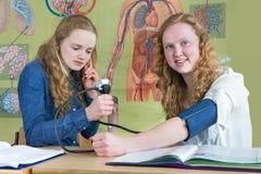 2 девочка-подростка измеряя кровяное давление в уроке биологии Стоковая Фотография