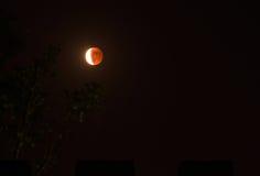 Еврейская пасха тетрады луны крови Стоковое Изображение RF