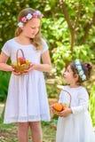 Еврейский праздник Shavuot Маленькие девочки HarvestTwo в белом платье держат корзину со свежими фруктами в саде лета стоковые изображения rf
