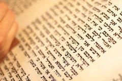 Еврейский человек с сочинительством бороды на перечене пергамента Фото принятое дальше: 30-ое декабря 2015 Стоковое Изображение RF