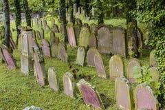 Еврейское кладбище в Wiesloch, Baden Wuerttemberg Стоковые Фотографии RF