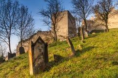 Еврейское кладбище под средневековым замком Beckov Стоковое Изображение
