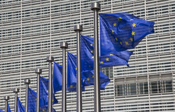 евроец brussels flags соединение Стоковое Фото