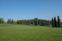 Европа, Италия, венето, Верона, парк Sigurta, луг стоковое изображение