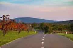 Европа, Словения, золотая осень стоковая фотография rf