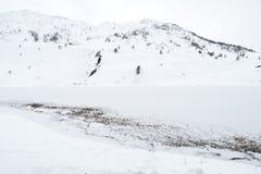 Европеец Альпы озера Snowy во время зимы Стоковая Фотография