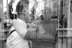 Европейские красивые пары представляя на улице Стоковые Фотографии RF
