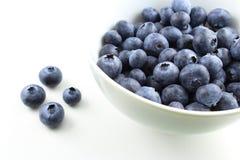 Европейские плодоовощи голубики Стоковая Фотография