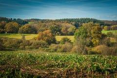 Европейский аграрный ландшафт Стоковые Фотографии RF