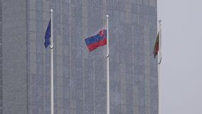 Европейский союз и литовские флаги двигают в ветер вьюги Падение снежка акции видеоматериалы