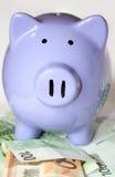 евро банка замечает piggy Стоковое Изображение RF