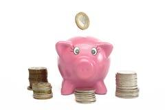 евро банка piggy Стоковое Фото