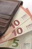 Евро и бумажник Стоковое Изображение RF