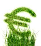 Евро подписывает внутри зеленую траву Стоковые Изображения