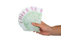 100 евро Banknots в руке Стоковое Изображение RF