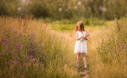 девушка 10 Весн-лета Стоковое Изображение RF
