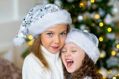 2 девушка, подарок, рождественская елка, белые шляпы Стоковое Изображение