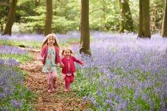 2 девушки бежать через древесины Bluebell совместно Стоковое фото RF
