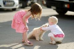 2 девушки встречали щенка Стоковая Фотография