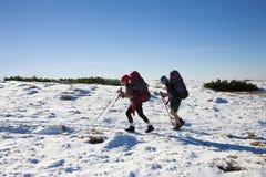 2 девушки в горах Стоковые Фото