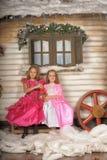 2 девушки в пинке для рождества Стоковые Фото