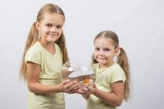 2 девушки держа руки в аквариуме с рыбкой Стоковые Фотографии RF