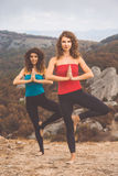 2 девушки делают йогу в ландшафте гор Стоковые Фотографии RF