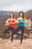 2 девушки делают йогу в ландшафте гор Стоковая Фотография