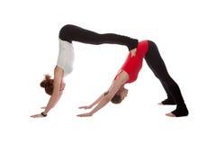2 девушки делая йогу Стоковое Изображение RF