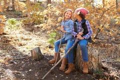 2 девушки играя в древесинах осени совместно Стоковая Фотография