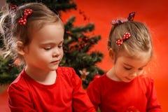 2 девушки и рождественская елка Стоковое фото RF