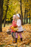 2 девушки идя в парк осени Стоковые Изображения RF