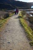 3 девушки идя на дорожку национального парка Стоковые Изображения