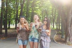 3 девушки красивых молодых boho шикарных стильных идя в парк Стоковые Фотографии RF