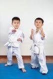 2 девушки мальчиков демонстрируют боевые искусства работая совместно Стоковые Изображения