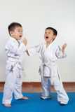 2 девушки мальчиков демонстрируют боевые искусства работая совместно Стоковое Фото