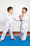 2 девушки мальчиков демонстрируют боевые искусства работая совместно Стоковое фото RF
