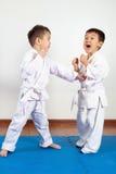 2 девушки мальчиков демонстрируют боевые искусства работая совместно Стоковая Фотография RF