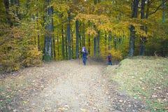 2 девушки при рюкзаки приходя через лес Стоковые Изображения RF