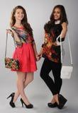 2 девушки при сумки представляя для рекламировать Стоковые Фото